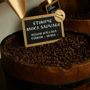Café d'Ethiopie Moka Sauvage - Région Walläga - Terroir « Homa » Bio en grain ou moulu